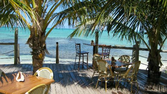 Beach Bars For Sale Horse Eye Jack S Beach Bar And Grill