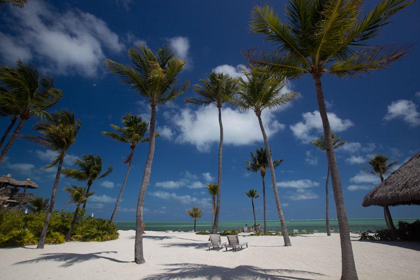 Tiki bar bars in islamorada postcard inn beach resort for Mad beach fish house menu